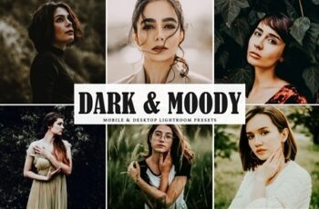 Dark & Moody Lightroom Presets 3976046 6