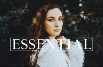Essential Lightroom Presets Pack 3976069 8