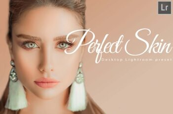 18 Perfect Skin Desktop Lightroom Preset 1663486 2