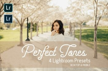 Perfect Tones Lightroom Presets 3979543 6