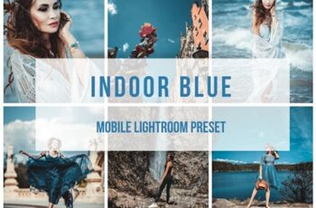 Lightroom Mobile Preset Indoor BLUE 3879417 6