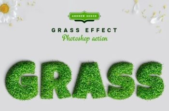 Grass Photoshop Action 24141986