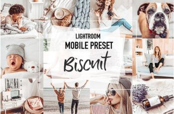 BISCUIT 4 Mobile Lightroom Presets 3956972 1