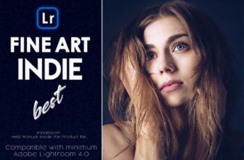 Fine-Art Indie Lightroom Presets 3617082 15