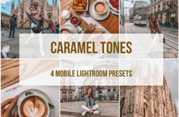 Lightroom mobile presets 3896918 2
