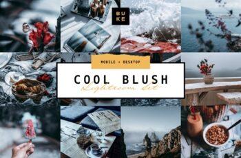 5 Cool Blush Lightroom Presets Pack 4001769 7
