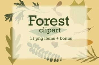 Forest Clipart Botanical Illustrations 1673845 5