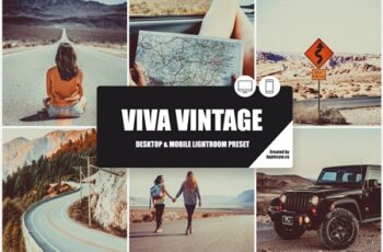 Viva Vintage Lightroom Preset 3977625 4