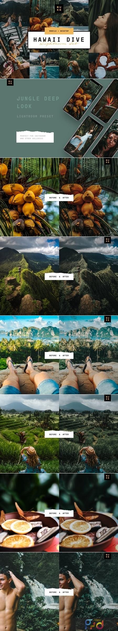 Hawaii Tropical Lightroom Preset 3916299 1