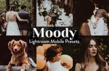 Moody Lightroom Presets Mobile 4015357 3