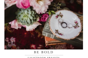Twig & Olive Photography - Be Bold Presets 7
