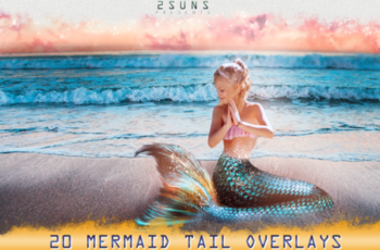 Mermaid Tail 1708982 7