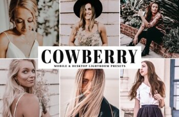 Cowberry Mobile & Desktop Lightroom Presets 1717661 7