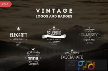 Vintage Logos and Badges Template - Vol.3 8TE2DQC 7