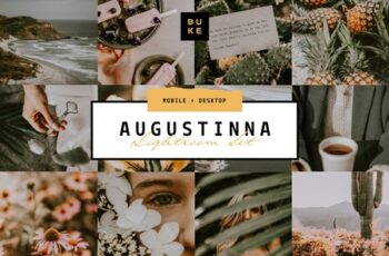 Augustina Lightroom Preset 4008293 6