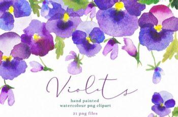Watercolour Flower Violets Clipart 1738559