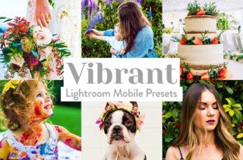 Vibrant Lightroom Presets Mobile 4026024 6