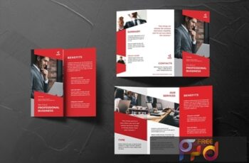 Professional Trifold Brochure HUER3XT 4
