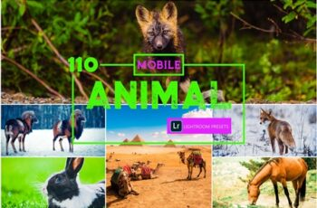 110 Animal Mobile Lightroom Presets 4102328 4