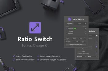 Ratio Switch - Format Change Kit 4137948 7