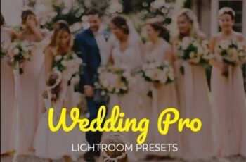 15 Premium Wedding Lightroom Presets Pack 22449050