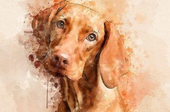 Watercolor Masterpiece - Photoshop Action 22921333 7