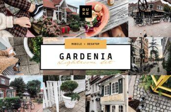 Gardenia Ligtroom Preset 4109009 4