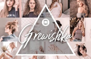 Mobile Lightroom - Grewishka 4090372 7