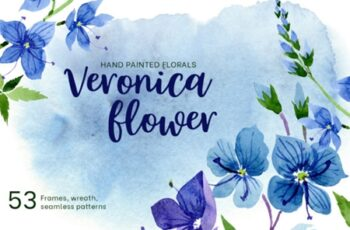 Veronica Flower Blue Watercolor 1823434