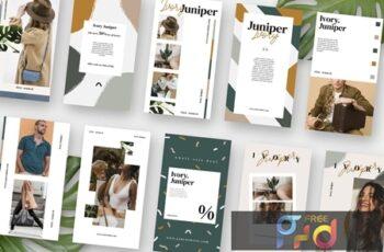 Ivory Juniper Stories Template PGTC6BM 3