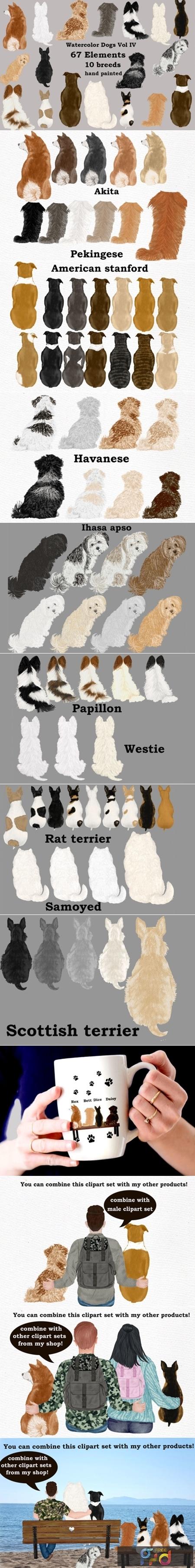 Dog Clipart, Dog Breeds, Pet Clipart 1831724 1