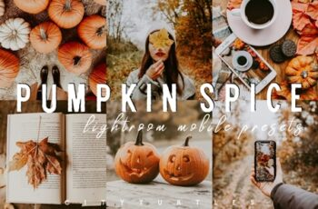 Moody PUMPKIN SPICE Mobile Presets 4156756 6