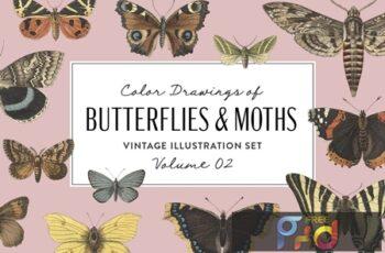 Butterflies & Moths Vintage Graphics Vol. 2 68FST47 7