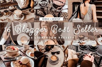 16 Blogger Best Seller Presets 4156049