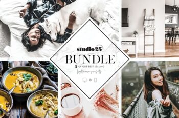 5 Lightroom presets bundle 4169635 5