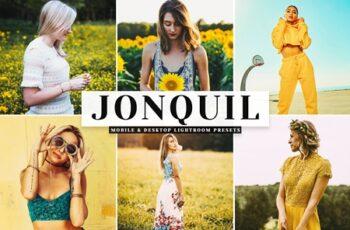 Jonquil Mobile & Desktop Lightroom Presets 371212