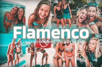 7 Mobile Lightroom Presets Flamenco 4179491 7