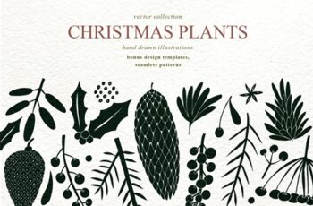 Christmas Plants Vector Collection 4126687 2