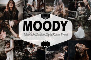 Moody Mobile & Desktop Lightroom Presets 1881815 8