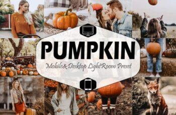 Pumpkin Mobile Desktop Lightroom Presets 1881843