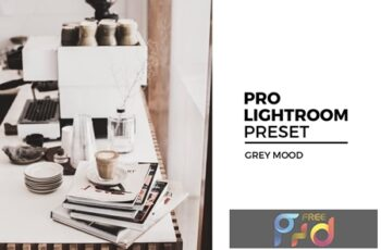 Grey Mood Lightroom Preset ECMCML7 5