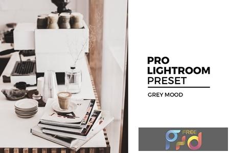 Grey Mood Lightroom Preset ECMCML7 1