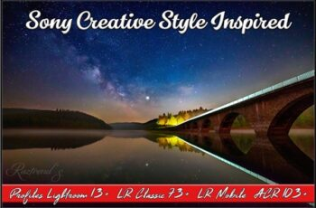 Sony Creative Style Inspired profile 4164190 3