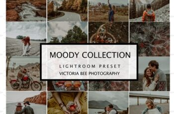 5 MOODY LIGHTROOM MOBILE PRESETS 4191040 4