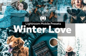 Lightroom Mobile Presets Winter Love 4190318 4