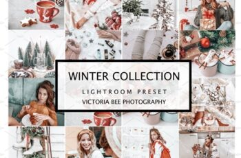 10 WINTER LIGHTROOM PRESETS 4241462 5