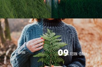 Sea of Grass Portrait Presets 4254637 5