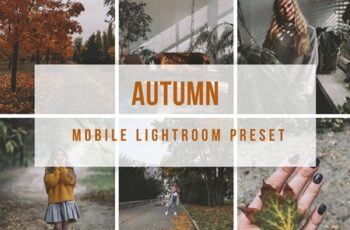 Lightroom Mobile Autumn Preset 4190986 5