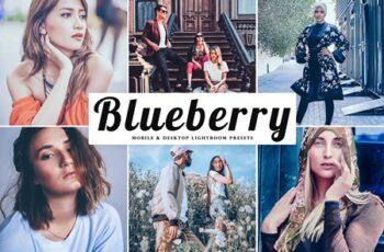 Blueberry Mobile & Desktop Lightroom Presets 379057 4