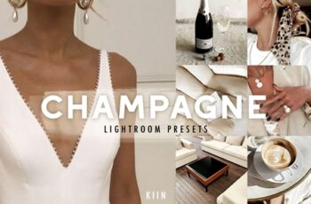 5 CHAMPAGNE LIGHTROOM PRESETS 4237079 6